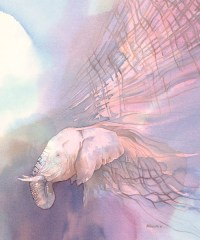 Hide of an Elephant by Alison Nicholls