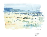 Tarangire field sketch © Alison Nicholls