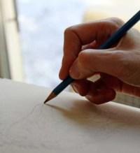 Alison Nicholls sketching wolves
