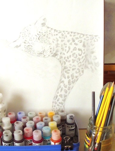 Leopard drawing by Alison Nicholls