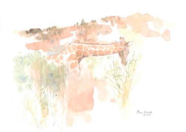 Browsing Giraffe Field Sketch by Alison Nicholls ©2015