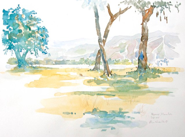 Mana Pools Field Sketch by Alison Nicholls