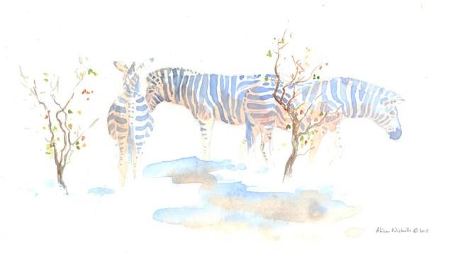 Pitse ya Naga Field Sketch by Alison Nicholls ©2015