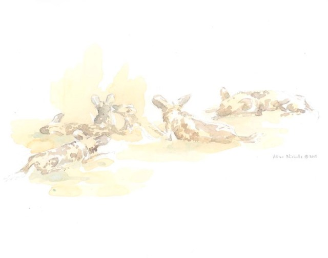 Painted Dog Pack At Rest Field Sketch by Alison Nicholls