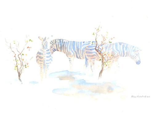 A herd of Zebra in Mopane Field Sketch by Alison Nicholls