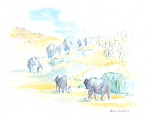 Elephant Herd Field Sketch by Alison Nicholls©2016