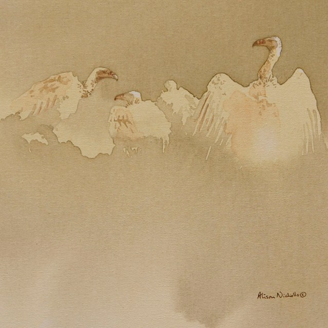 """White-backed vultures acrylic painting by Alison Nicholls, 8x8"""""""