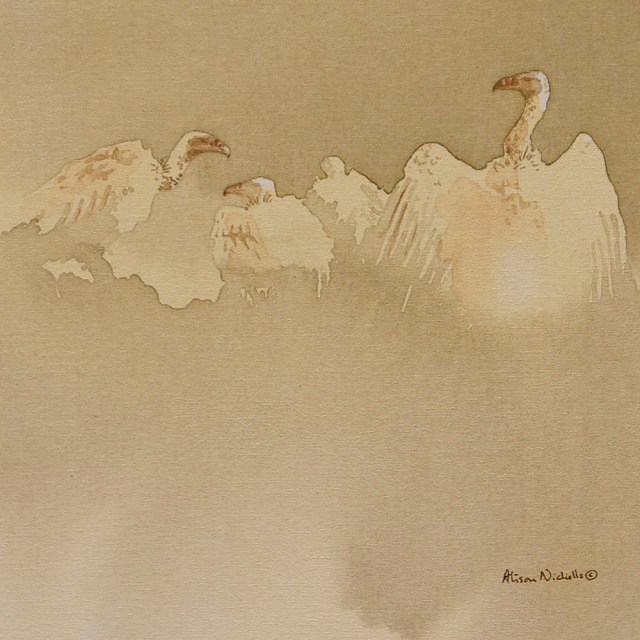 White-backed vultures acrylic painting by Alison Nicholls, 8x8""