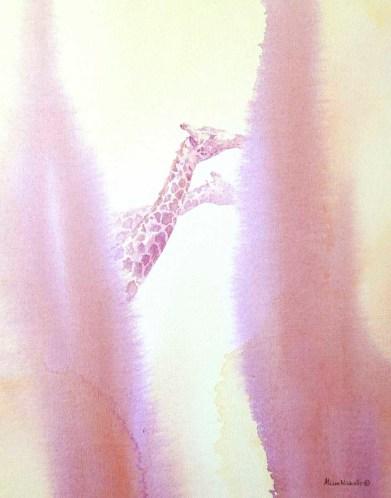 Giraffe Bulls Browsing by Alison Nicholls