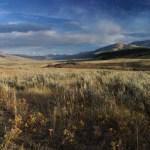 Lamar Valley, Yellowstone, USA