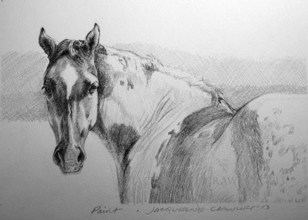Horse Drawing Pencil Artinstructor