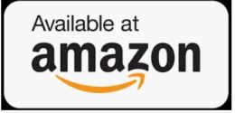 "Alt=""spark a little flame by jennifer archerpromotion artisan book reviews"""