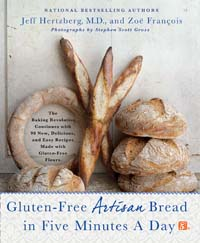 GFBreadIn5 Cover for website review page