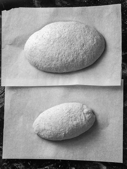new-healthy-bread-in-five-minutes-a-day-11-of-19-2