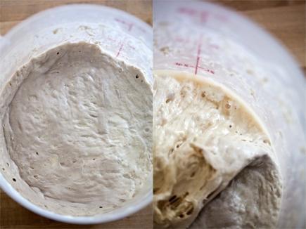 Old Dough | Breadin5 01