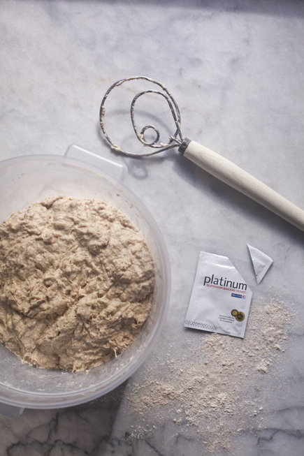 Whole Wheat Dough, Danish Whisk, Platinum Yeast | Artisan Bread in Five Minutes a Day