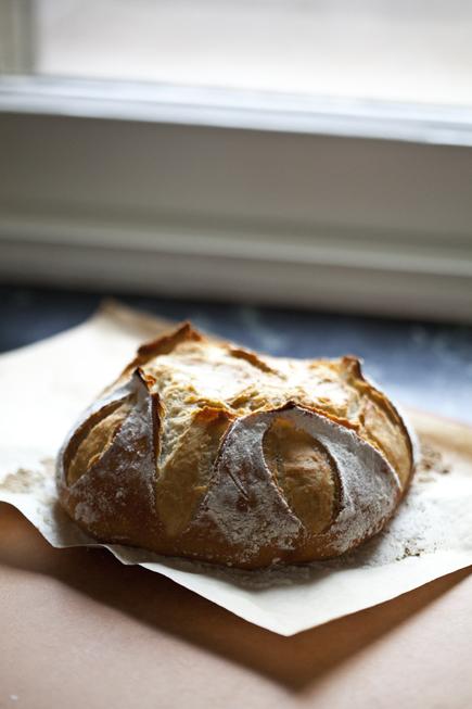 Old dough boule | Breadin5 04