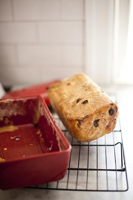 Raisin Walnut Bread | Breadin5 16