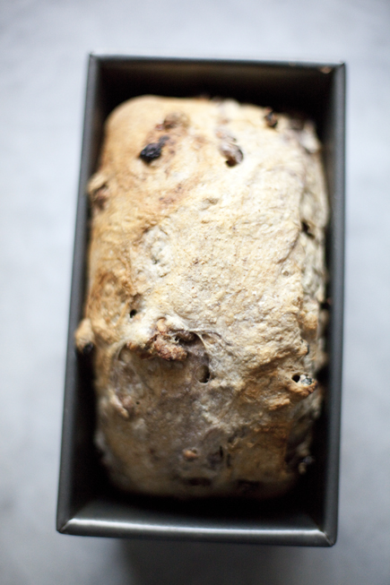 Raisin Walnut Bread | Breadin5 20