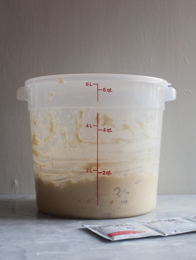Container of Bread Dough   Artisan Bread in Five Minutes a Day