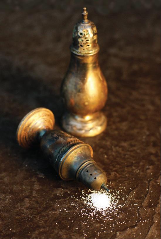 salt basics shakers