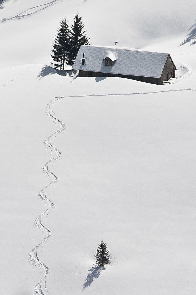 Снежна партина