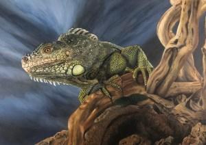 Dramatic Iguana