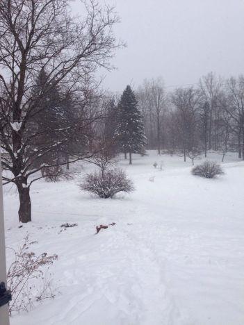 clarkston-snow-1