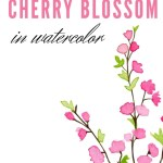 how to paint cherry blossoms in watercolor