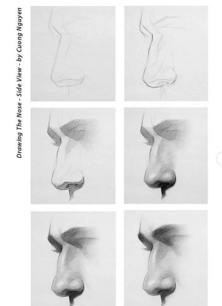 How to draw a nose 10