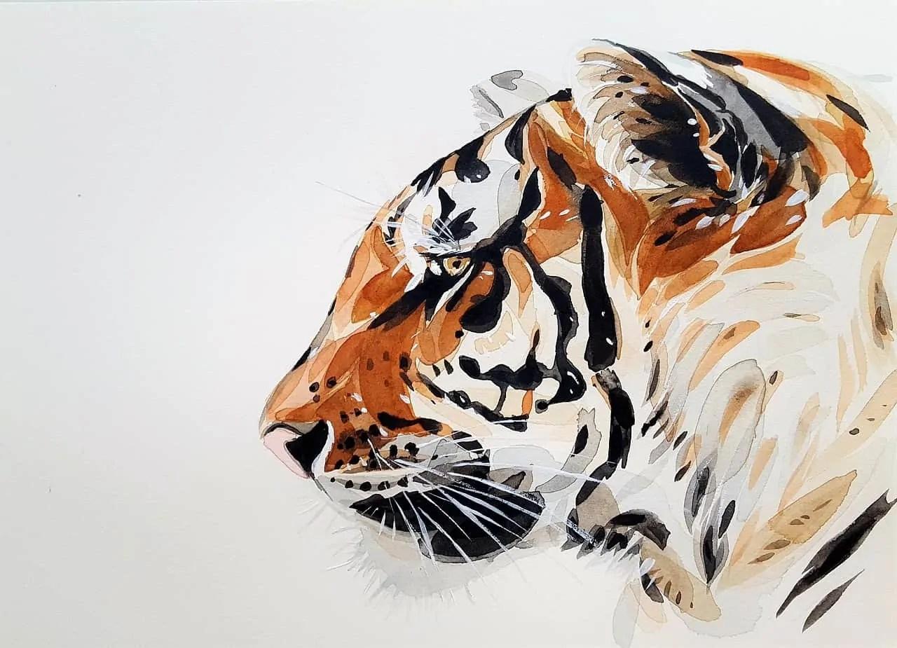 tiger-3039280_1280 5