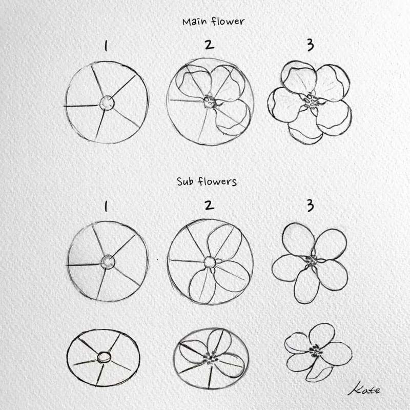 How to draw flowers for beginners? 91
