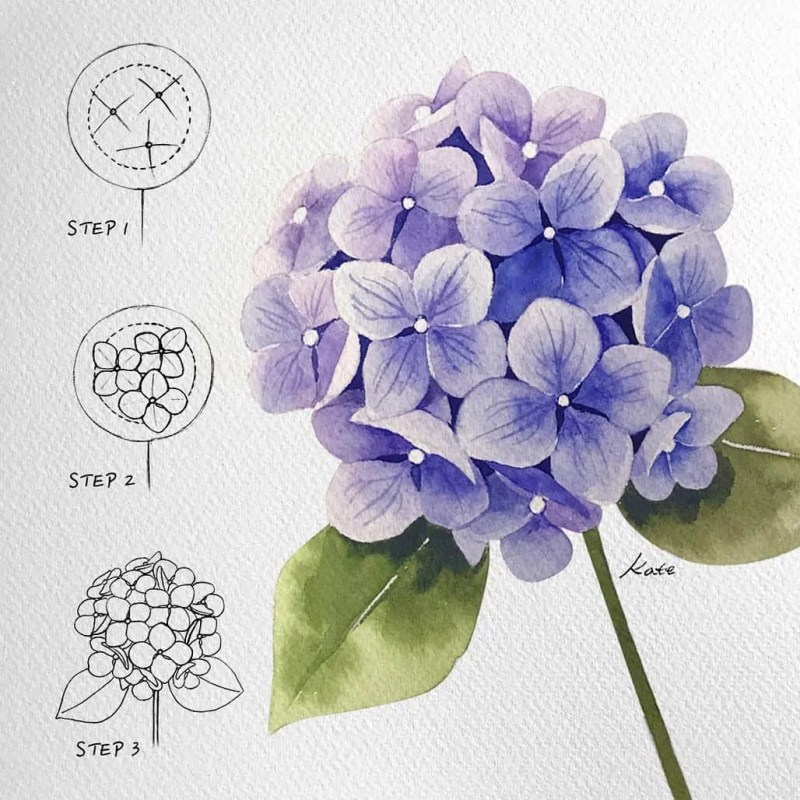 How to draw flowers for beginners? 57