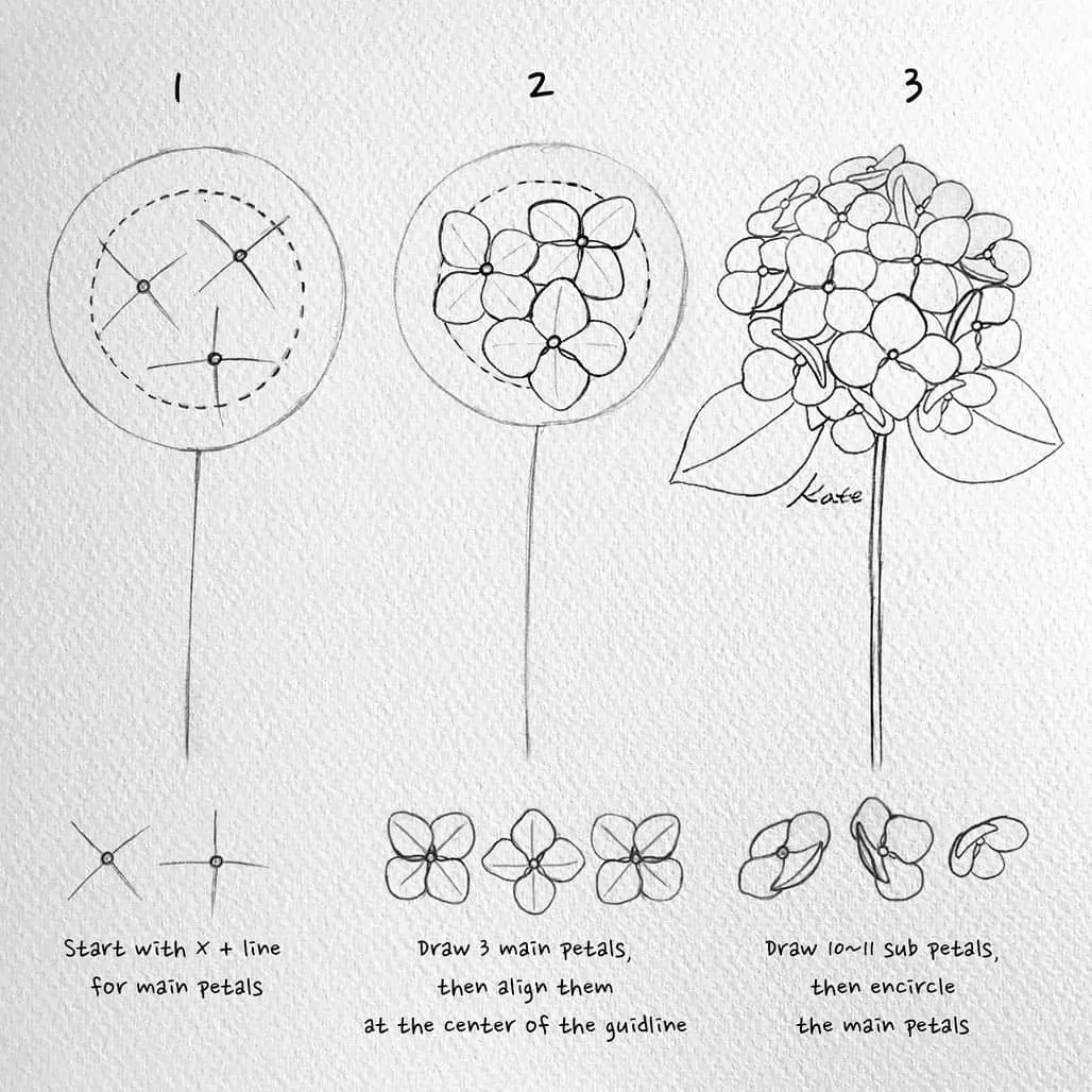 How to draw flowers for beginners? 63