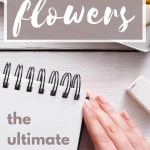 how to draw flowers