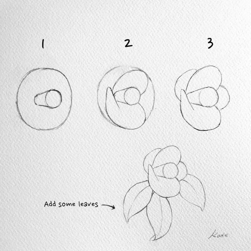 How to draw flowers for beginners? 113