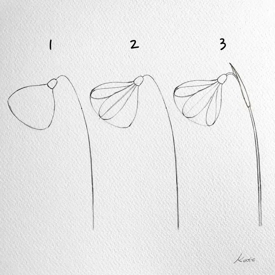 How to draw flowers for beginners? 103