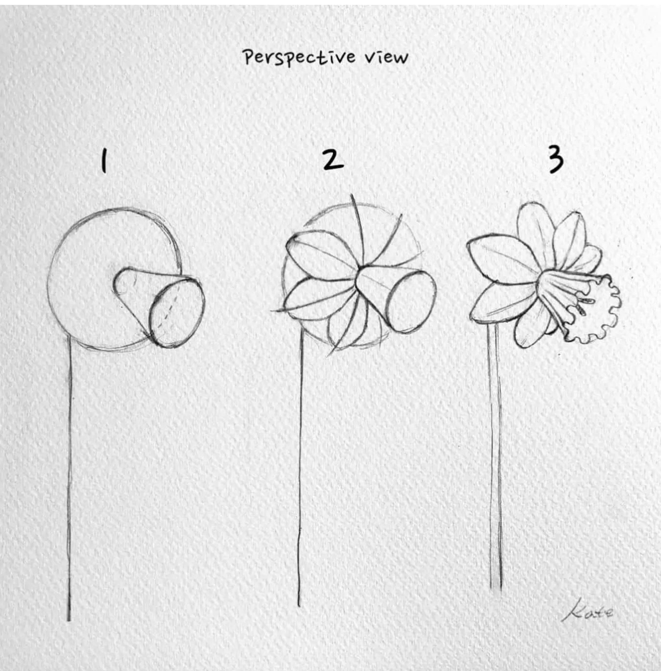 How to draw flowers for beginners? 38