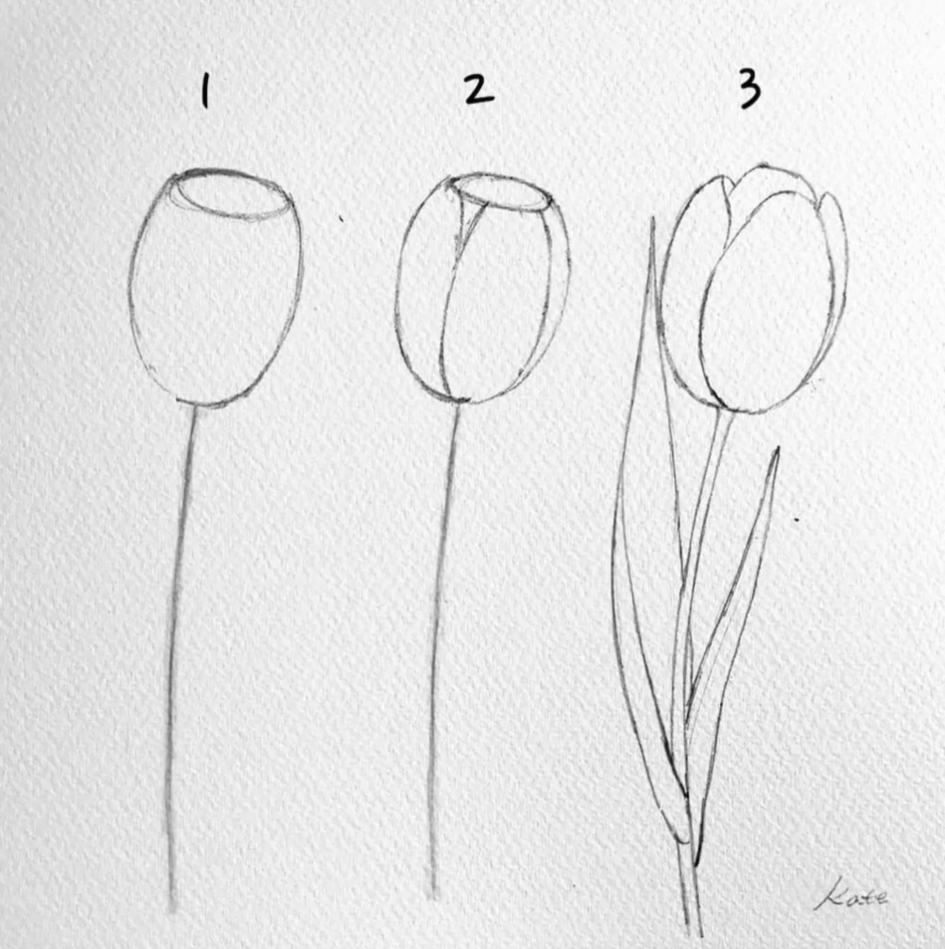 How to draw flowers for beginners? 47