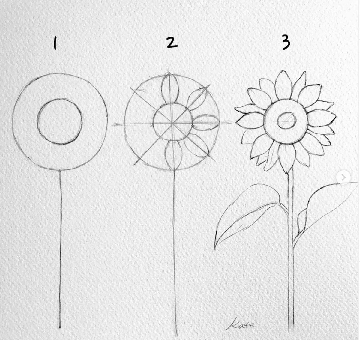 How to draw flowers for beginners? 52