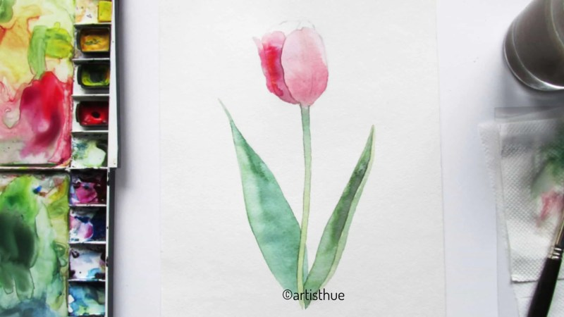 How to paint tulips in watercolor? 13