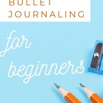 How to set up Bullet Journal - Honest Review of Brainbook 29