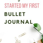 How to set up Bullet Journal - Honest Review of Brainbook 7
