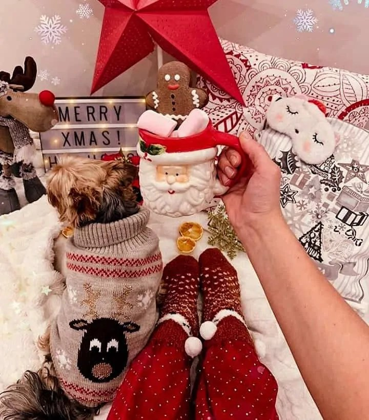 30 Christmas Aesthetic Images you must see: WARNING you will get Christmas mood INSTANTLY! 127