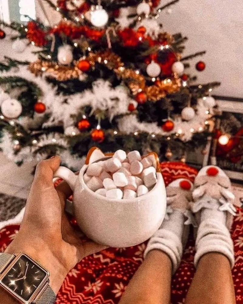 30 Christmas Aesthetic Images you must see: WARNING you will get Christmas mood INSTANTLY! 21