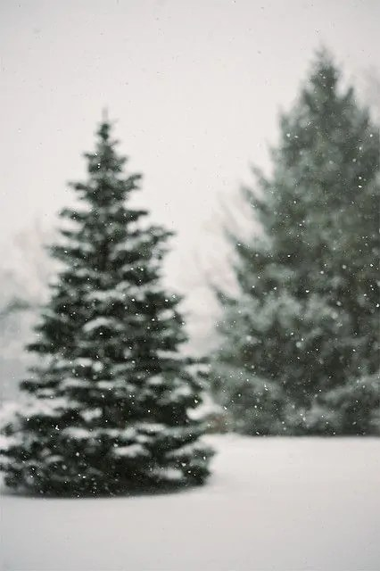 21+ Christmas iPhone Wallpapers you must SEE! 101