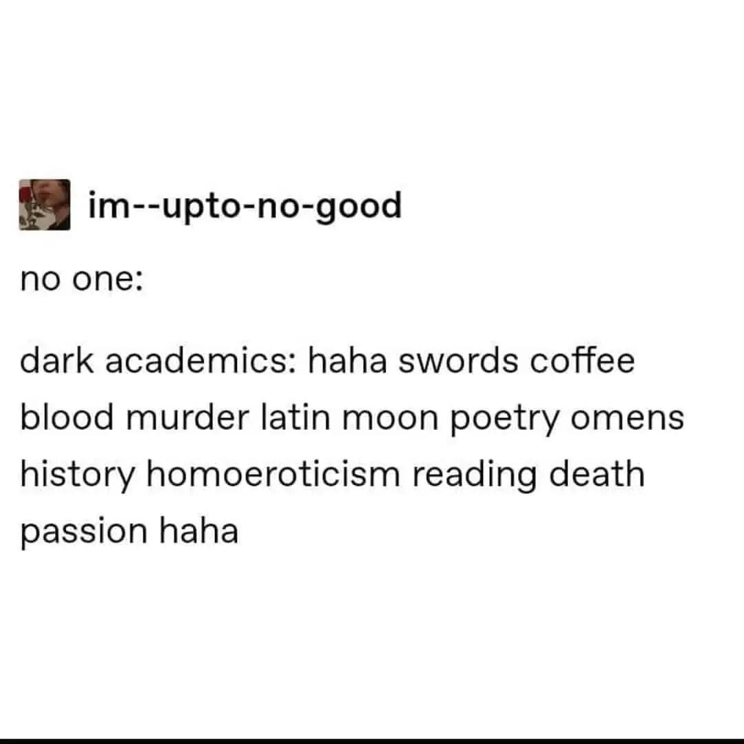Dark Academia Quotes 9