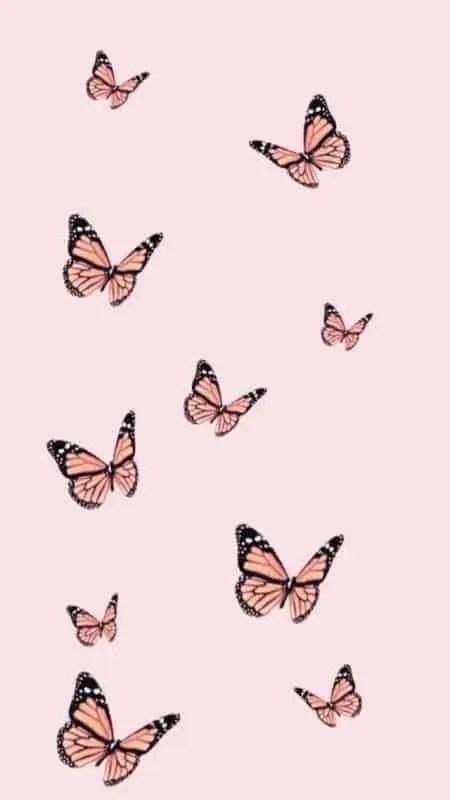 Aesthetic-Butterfly-Phone-Wallpaper 5