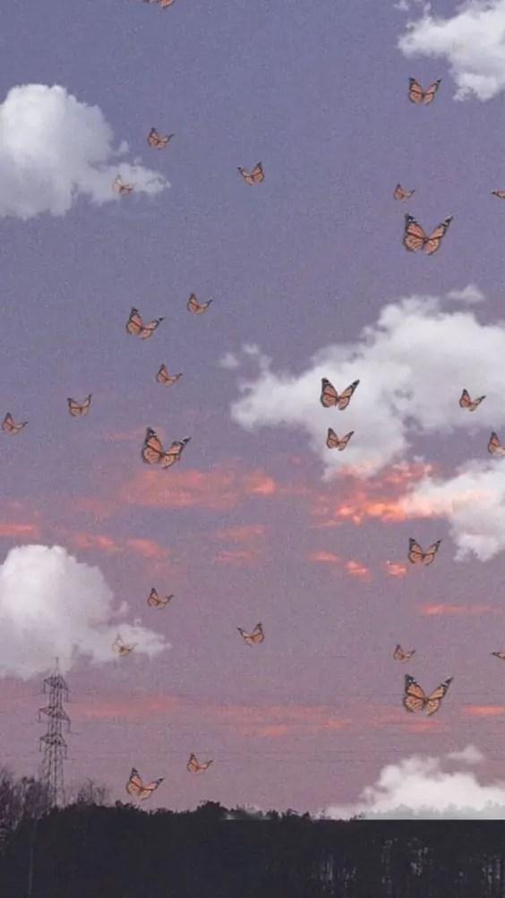 Sfondo-farfalle 5