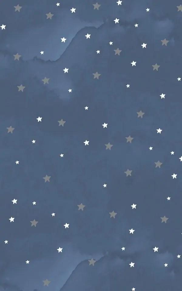 Starry-Night-Wallpaper-Mural-Murals-Wallpaper 5